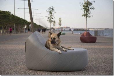 mobilier-urbain-chien