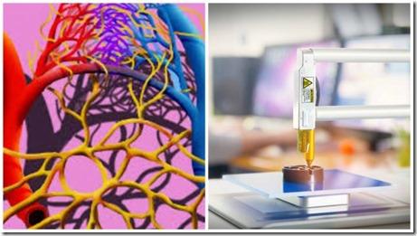 un-vaisseau-sanguin-cree-grace-une-imprimante-3d